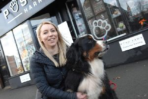 """""""We're not the only ones affected"""" - Michaela Stothard of Posh Paws of Leeds Road, Harrogate.(1801231AM2)"""