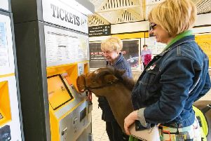 Digby buys a ticket for his journey.