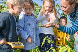 EXPLORE: Children get up close to a caterpillar at one of the National Garden Scheme venues. Picture: Clive Morgan.