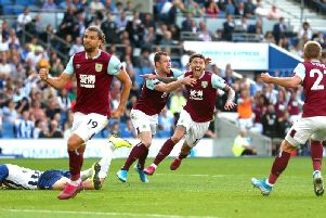 Jeff Hendrick celebrates his equaliser at Brighton