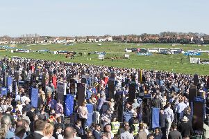 They race at Ayr on Friday