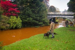 Complimenting the stunning autumnal colours in Buxton's Pavilion Gardens, the river Wye has turned a vivid orange colour. Photo: Rod Kirkpatrick / F Stop Press.