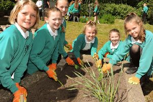 Year 5 and 6 pupils from Class A at the Furness Vale Primary School put their gardening skills to use in the community garden across from their Buxton Road school where they have been taking part in a Prince William Award with SkillForce.