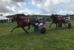 Harness racing or trotters at Longnor Races 2019