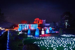Illuminated flower garden at the entrance of the trail