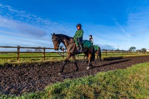 Lady Buttons on the gallops at Phil Kirby's yard under work rider Jennie Durrans - the filly is due to reappear at Aintree today.
