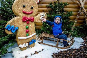 A youngster enjoys the Winter Wonderland
