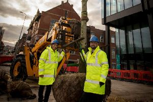 Michael Ahern and Suntosh Kaur  with the rootball of opn of the trees in Corporation Street