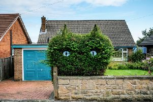 The cat shaped hedge
