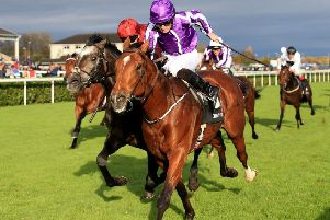 Saxon Warrior, the 'monster of a horse', who won the first Classic of the year, the Qipco 2,000 Guineas, at Newmarket.