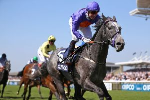 Grey Britain is in fine heart for the step up in trip at Lingfield. PIC: Tim Goode/PA Wire
