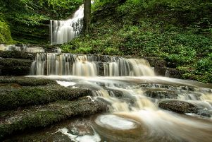 How many people have ventured to Scaleber Foss in the Yorkshire Dales as campaigner Susan Briggs appeals to Yorkshire people to explore their county?