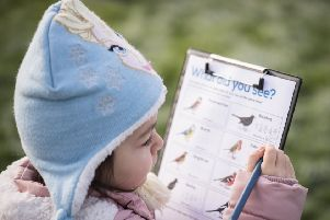 Pupils record which birds they have seen and send the results to the RSPB. Photo: Eleanor Bentall