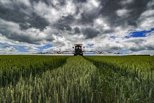Climate change action can deliver agriculture from dramatic rainfall impacts, according to the study. Picture by James Hardisty.