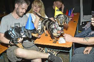 The first Daschund Pup-Up party in Leeds was a big hit with sausage dog lovers.