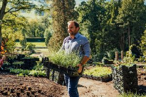 Steve Porter, head of gardens and landscape, is overseeing the first phase of the Arcadia transformation project which will see 80,000 new plants bedded in to the Chatsworth gardens before spring 2020.