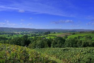 View across Danby Moor, North Yorkshire