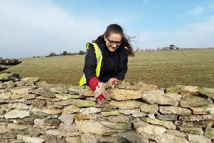 Dry stone walling on the North York Moors