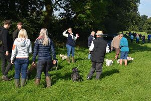 Local fundraisers and their four-legged friends get ready for the charity walk