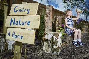 Lyra Coolican, aged 4, builds an insect home in her garden