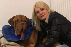 Mylo with his owner Madeleine Mcgrail, who needs to raise 1000 to pay for his radiotherapy treatment and save him from cancer. (s)