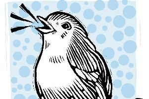 The Robin Calls -  Cath Fords illustration for the 72 seasons project forJanuary 15-19, 2020