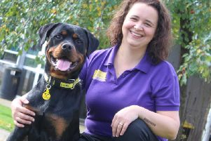 Emma Armitage with Rottweiler pup Fil, who was illegally smuggled into the country from Lithuania. Dogs Trust is launching a campaign ro warn people of the dangers of buying a puppy online