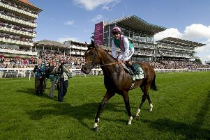 Tom Queally celebrates Frankel's win in the 2012 Juddmone International at York, arguably the world-beating horse's finest hour.