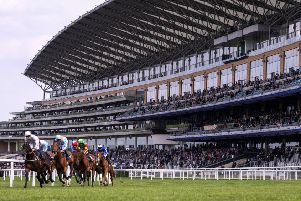 Racing against the backdrop of Ascot's spectacular main stand (PHOTO BY: Justin Setterfield/Getty Images)