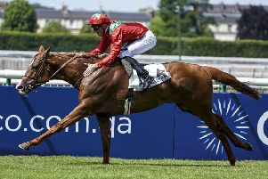 Waldgeist, trained in France by Andre Fabre, is fancied to land the big race of the day on day two of Royal Ascot (PHOTO BY: Alan Crowhurst/Getty Images)