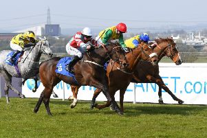 Mokaatil (near side) gets up to win the Riu Hotels And Resorts Handicap in the final strides. Picture: Alan Wright