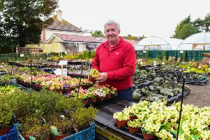 Reg Hutchinson of Grove House Plants, The Drive, Greatham, which has reopened after a fire in December.