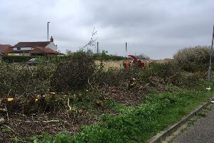 The hedge off Worset Lane being cut down on Saturday, April 6, 2019.