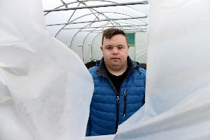 Alex looking through the damaged polytunnel, which was hit by vandals.