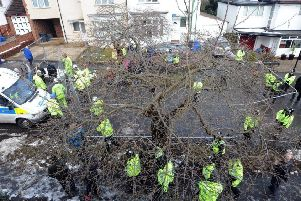 Police at one of Sheffield's tree felling sites last year.