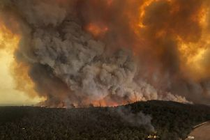 The Asutralian bushfires