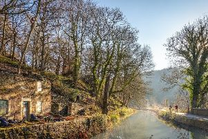 Derbyshire Wildlife Trust has submitted a planning application to repair the ruined Aqueduct Cottage on Cromford Canal (Photo: Ashley Franklin)