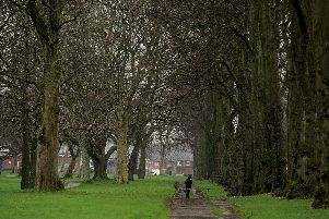 Proposals to reduce the boundary of a conservation area in a Preston park are being floated.