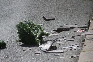 Debris from the roof in the road. Photo by Andrew Goulding.