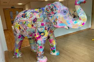 Tallulah the elephant donated to Derian House by RSP