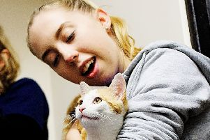 Vital Care: Animal care assistant Alicia Scott attends to a cat.