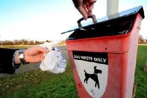 Dog-fouling complaints have dropped.