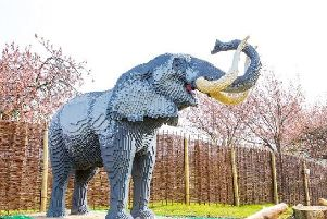 Earl Grey the Elephant, weighs a whopping 1.2 tonnes and took a team of six builders over nine weeks to create using more than 270,000 bricks!