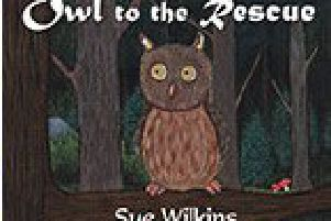 'Owl To The Rescue' by Sue Wilkins.