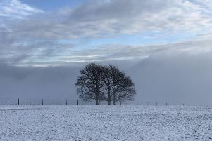 Winter wonderland: John Feather sent in this superb picture of Blackshaw Head, snapped on a frosty morning.