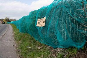 A company involved in placing netting on a hedgerow to stop birds from nesting have instructed their contractors to remove it.