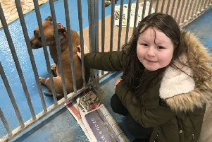 Eva Wheatman who has been fundraising for the Newcastle Dog and Cat Shelter in Longbenton.