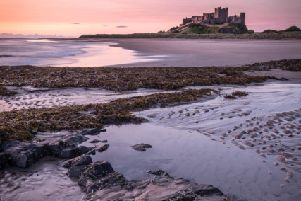 Bamburgh Castle by Sophie Elliott-Edwards.