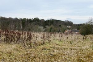The site of the proposed homes off Pottery Bank in Morpeth. Picture by Jane Coltman