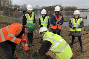 West Moor Primary School children planting up the islands for Killingworth Lake.